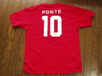 Ponte_t_2