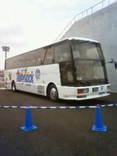 03_mito_bus