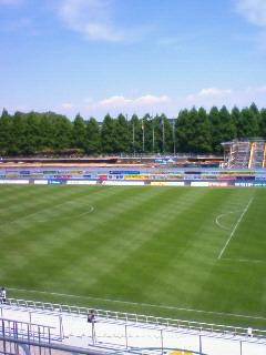 緑のスタジアム